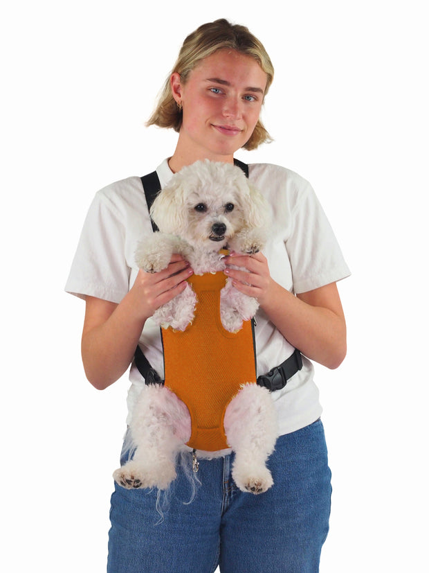 front facing dog carrier bag for small dogs