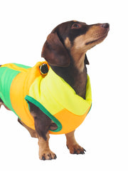 Bright colourful waterproof dog jacket and coat