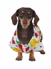 Affordable online dog apparel and hawaiian shirts