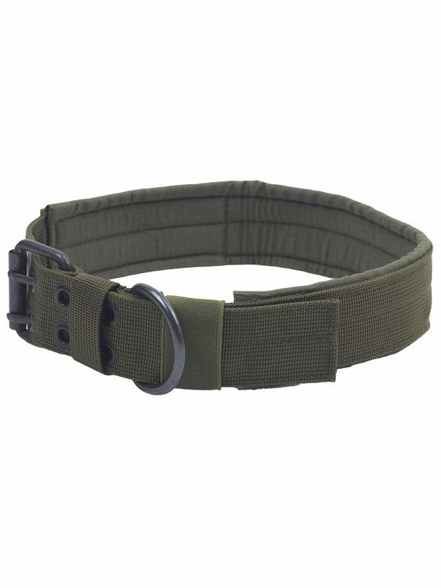 thick, large, strong dog collar