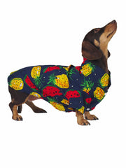 Feelin' Fruity Hawaiian Dog Shirt