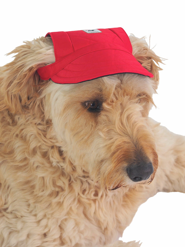 Cute hat for dogs in red with ear holes