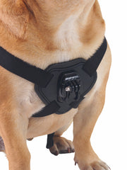 Cool gopro dog sport POV harness