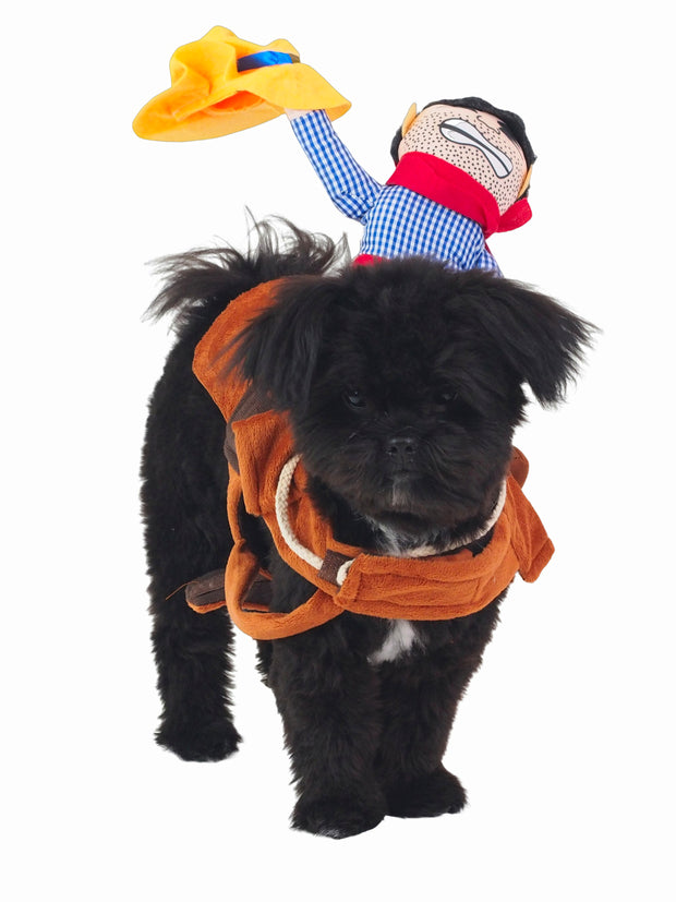 Cool riding cowboy dog halloween costume