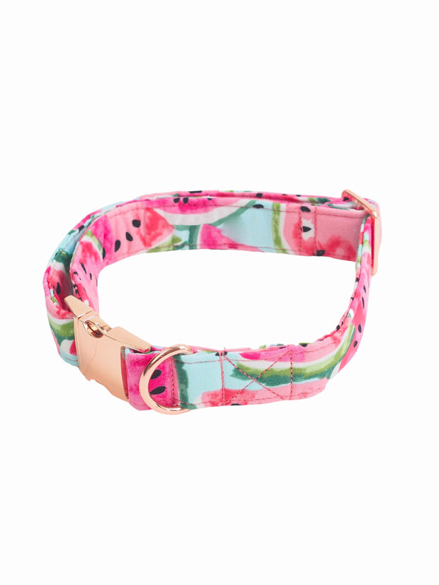 Fashionable watermelon pattern dog collar