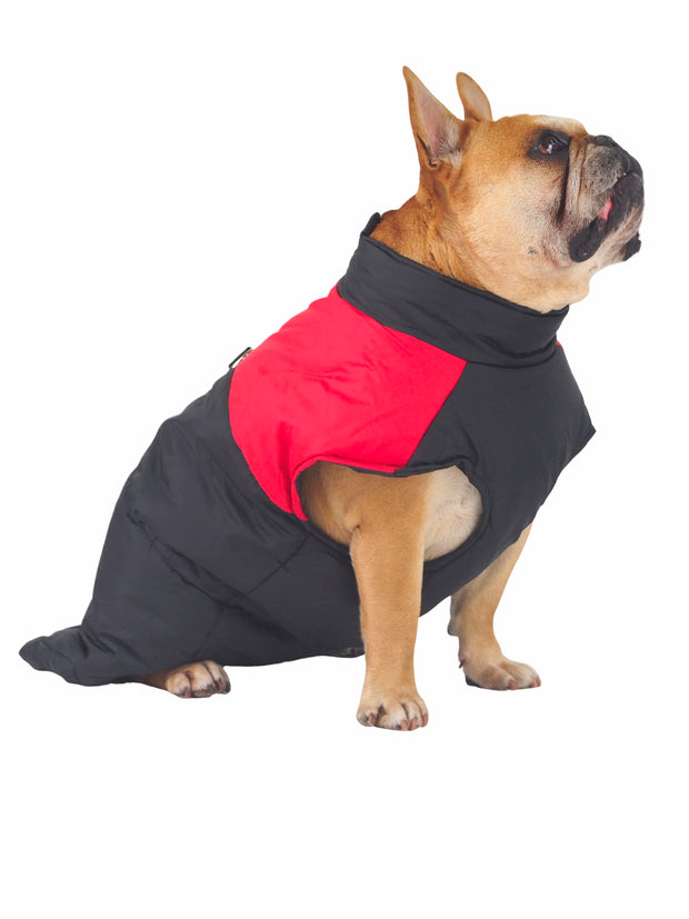 Warm waterproof dog jacket and coats