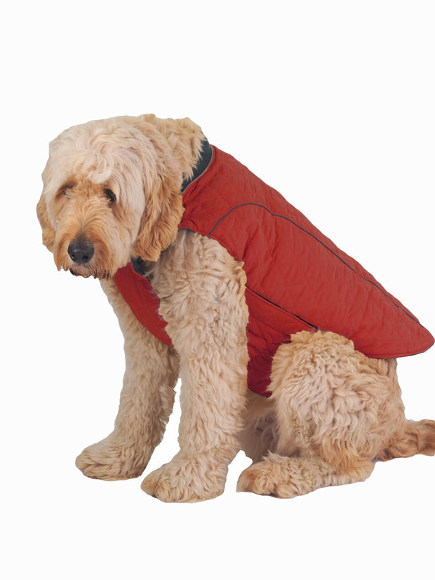 Warm winter thick dog jacket and coat in red