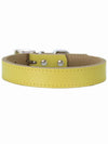 yellow leather dog collar australia