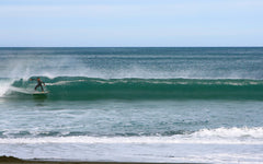 Lyall Bay Surf's Up