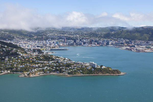 Wellington CBD and Roseneath