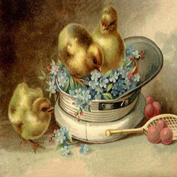EH-402 baby chicks in a hat