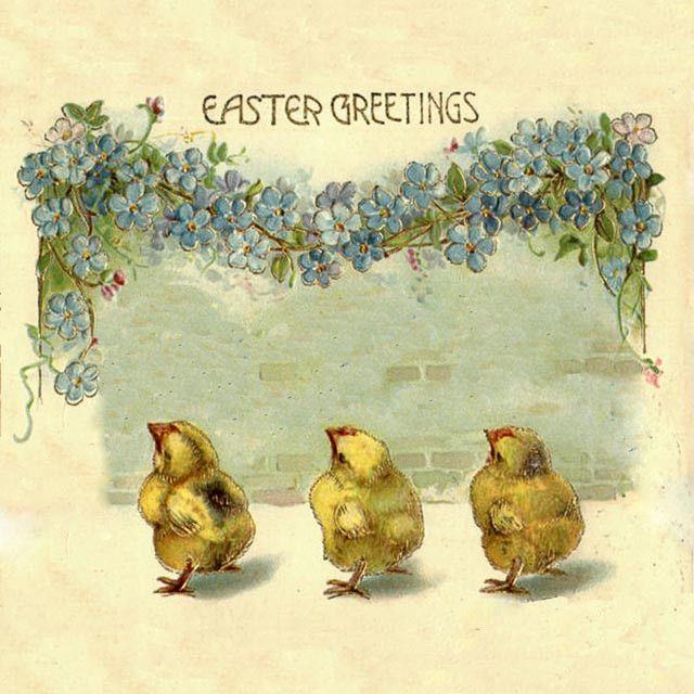 EH-408 easter greeting chicks