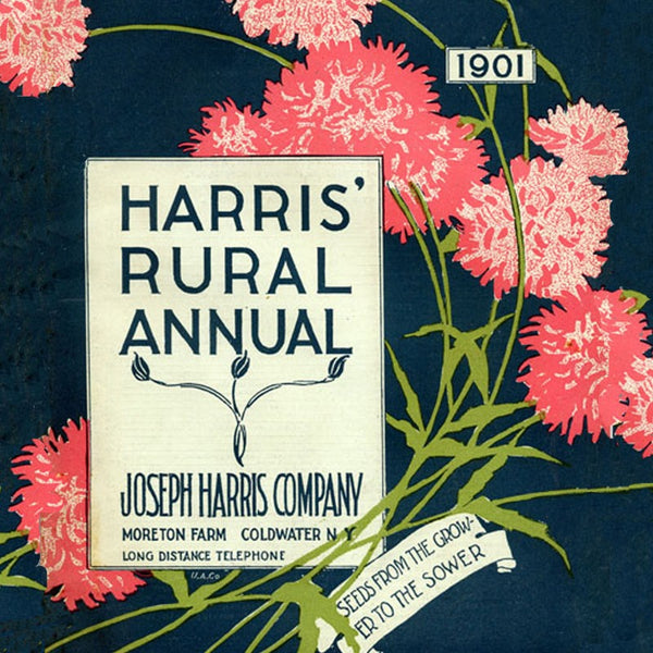 Seed Catalog Flower Annuals