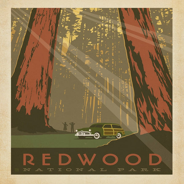 National Park - Redwoods
