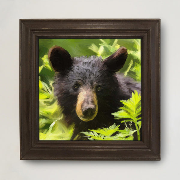 AD-722 Black Bear