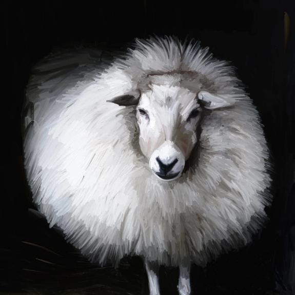 AD-556 Poofy Sheep