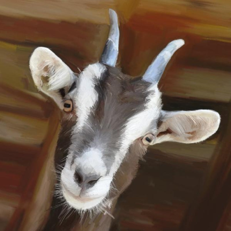 AD-204 Billy Goat
