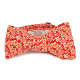 bright floral bow tie