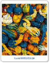 Load image into Gallery viewer, FL12 Pumpkin Delight