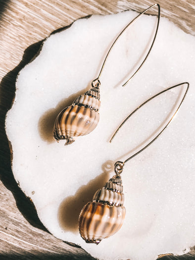Coraline Shell Dangle Earring