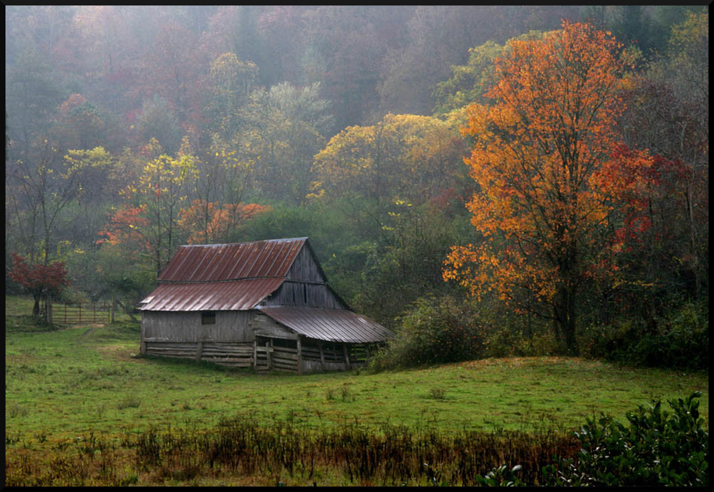 Peter McIntosh - Persimmon Barn Autumn