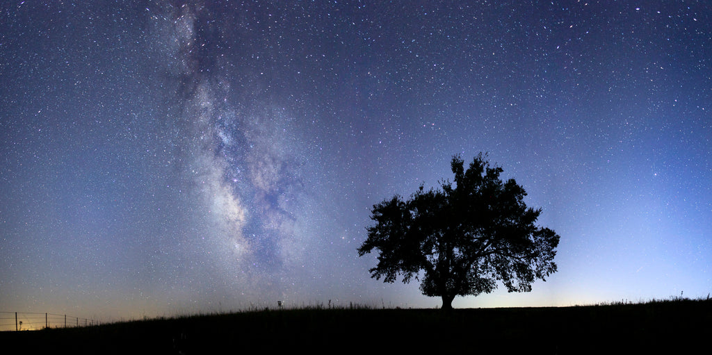 Milky Way over the Flint Hills