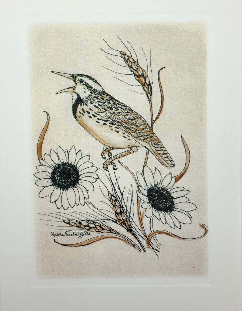 Meadowlark Card Set