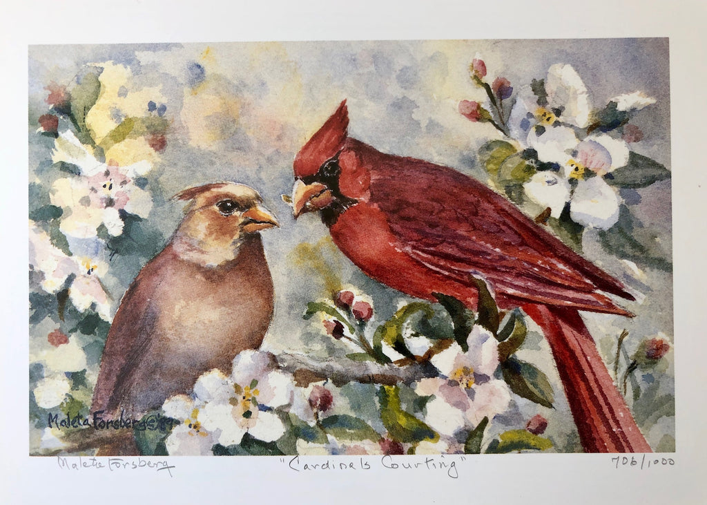 Cardinals Courting