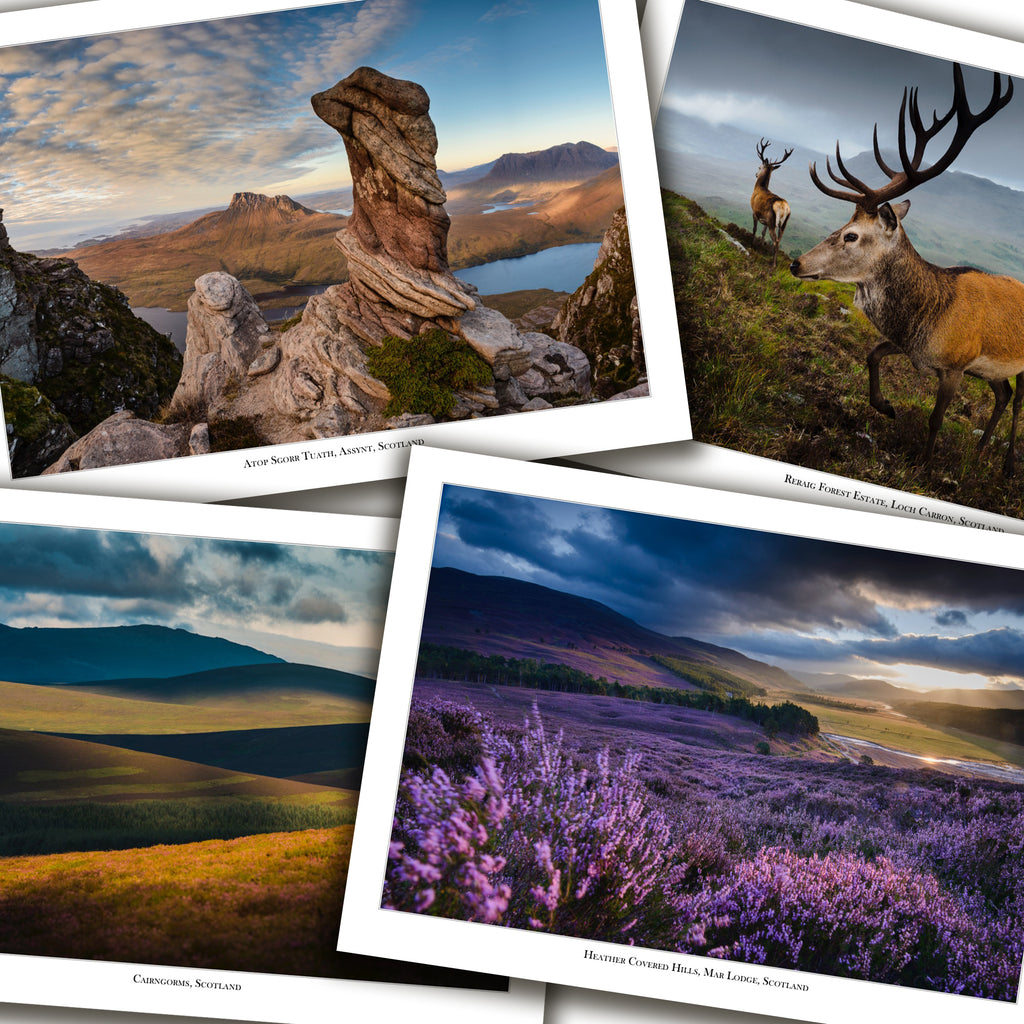 Scottish Moors Cards - Box of 8