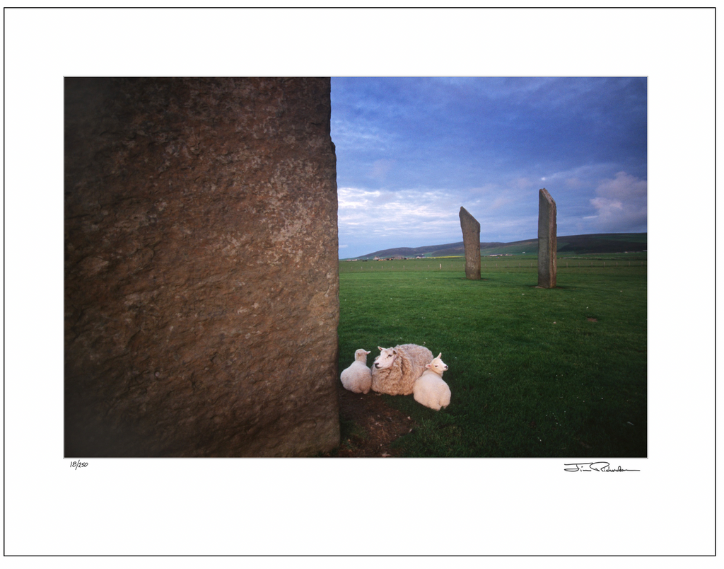 Bedding Down, Stones of Stenness, Orkney, Scotland