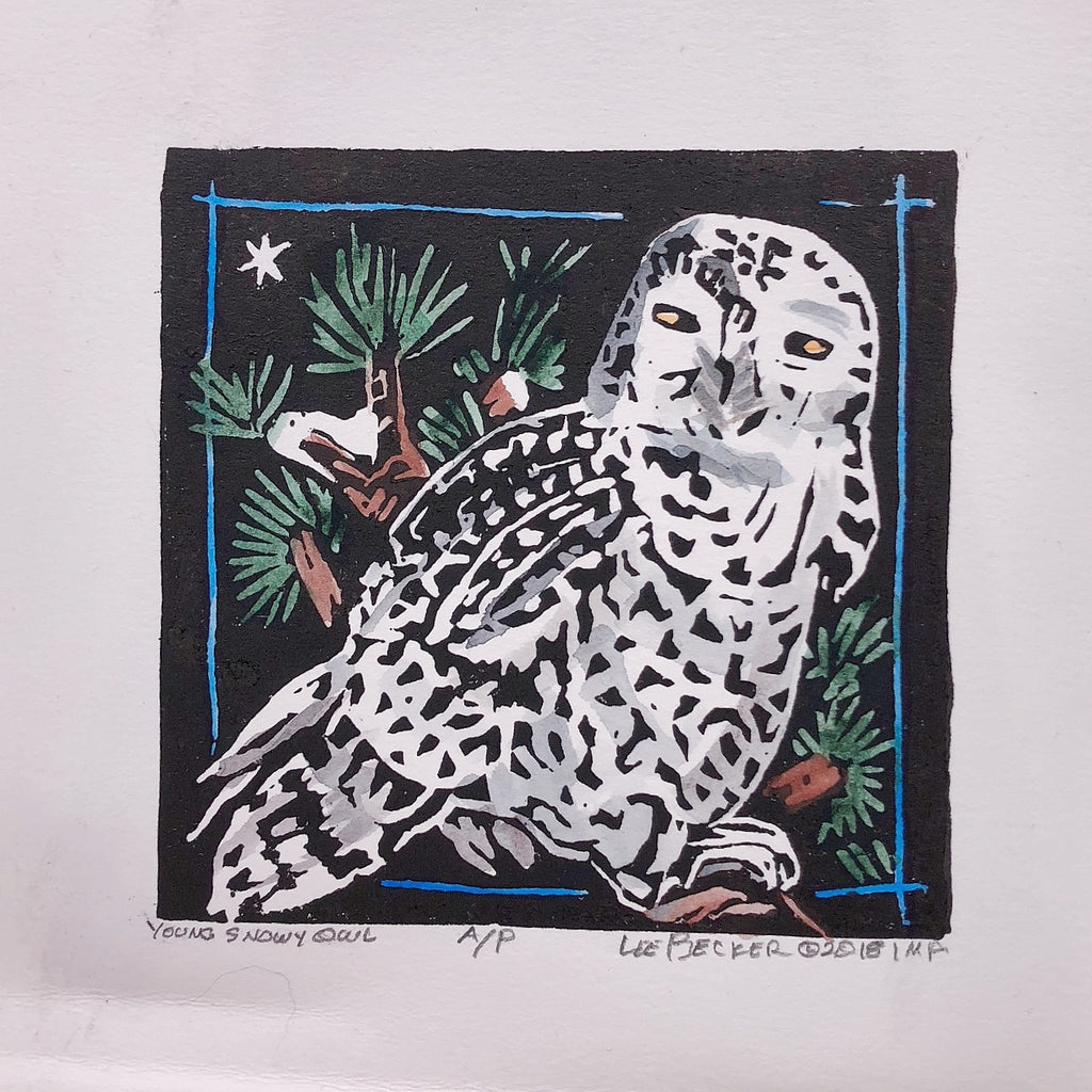 """Young Snowy Owl"" - Lee Becker"