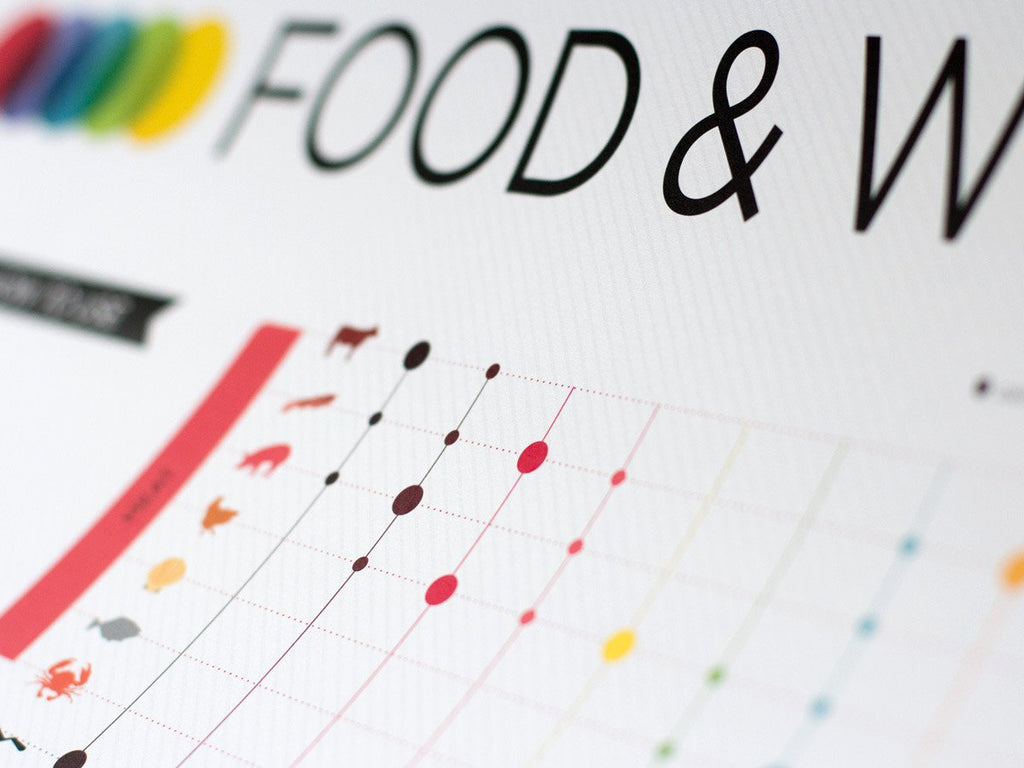 Close up of Advanced Food and Wine Pairing Poster 18x24 by Wine Folly