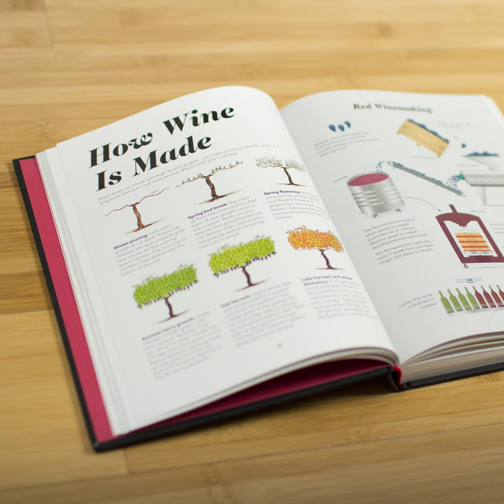 Wine Folly book open to page on how wine is made showing illustrations of vines and winemaking tools