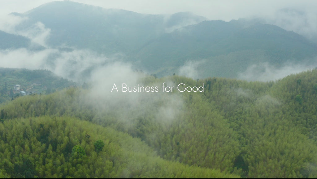 The bambu Story - a film for small business, entrepreneurs and all people