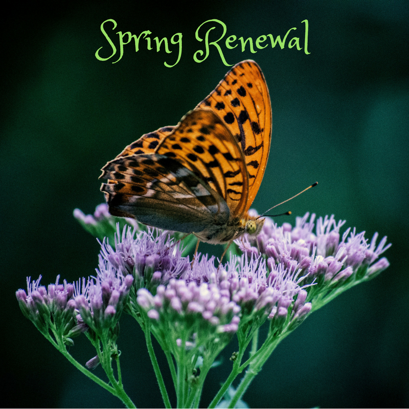 Spring Renewal for Body, Mind and Spirit