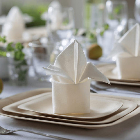 Bamboo Compostable Napkins