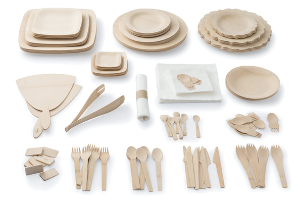 bambu bamboo disposable dinnerware