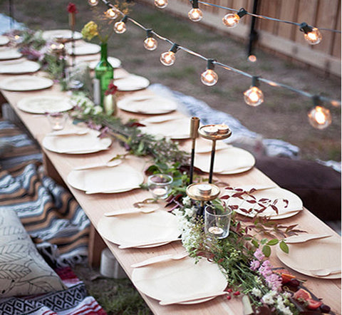 outdoor dinnerware and an alternative to paper plates