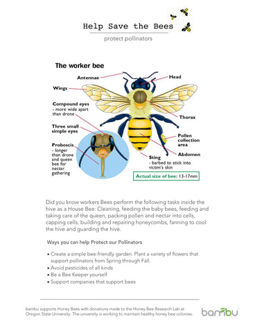 Second Help Save the Bees poster by bambu
