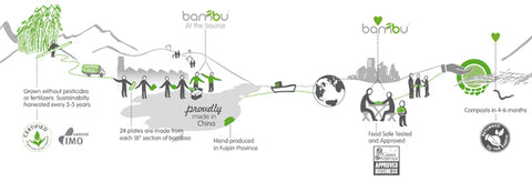 Inforgraphic of the making of a bamboo Spork