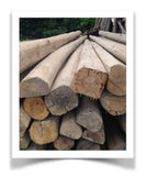 cedar salvage from dwellings