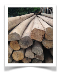 Cedar planks reclaimed in Eastern China