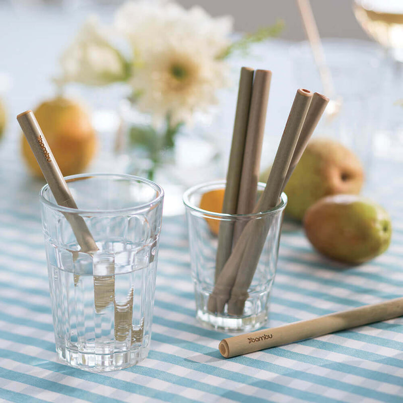 Reusable Short Bamboo Straws - bambu