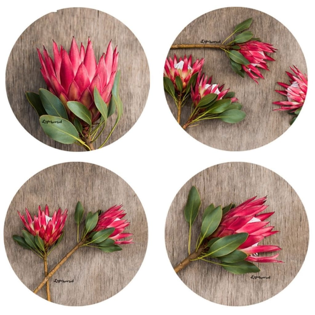 Lighthearted Coaster Set - Leafy Red - Gifting Ideas