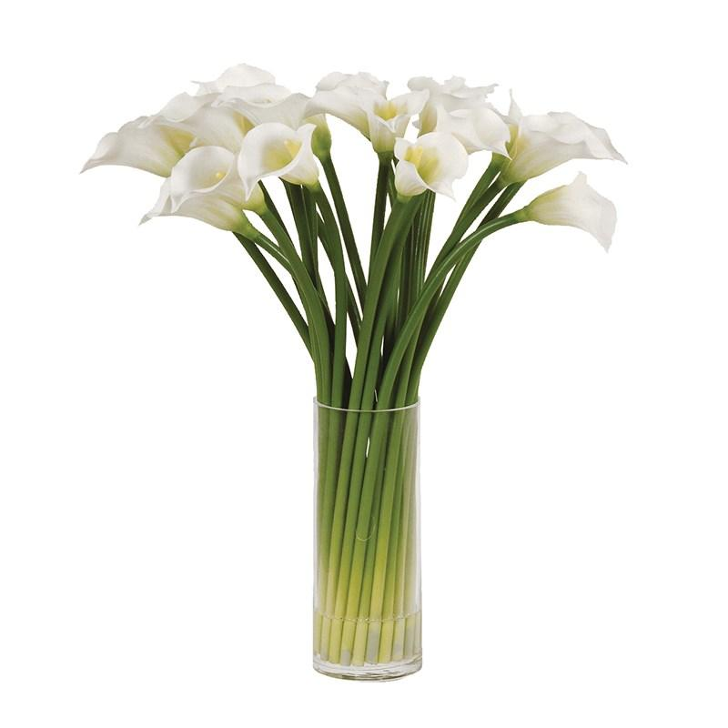 Large White Calla Lilies in Round Glass Column Vase