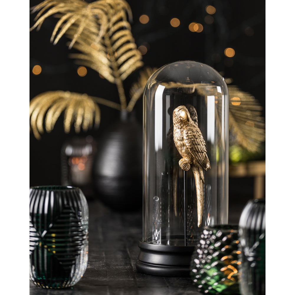 Macawley Ornament in Glass Bell Jar