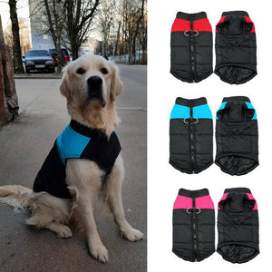 Dog Clothes Winter coat
