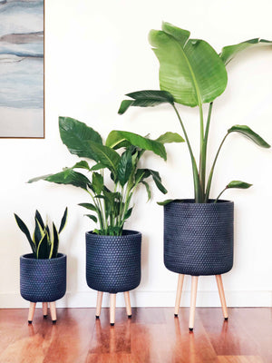 Open image in slideshow, Lincoln Tripod Planter | Indoor Pot | Interior Jungle