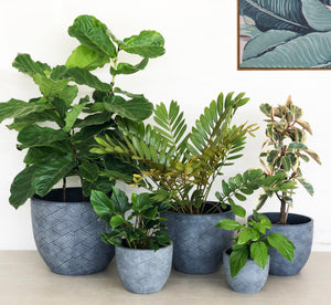 Open image in slideshow, Twill Planters | Indoor Pot | Interior Jungle