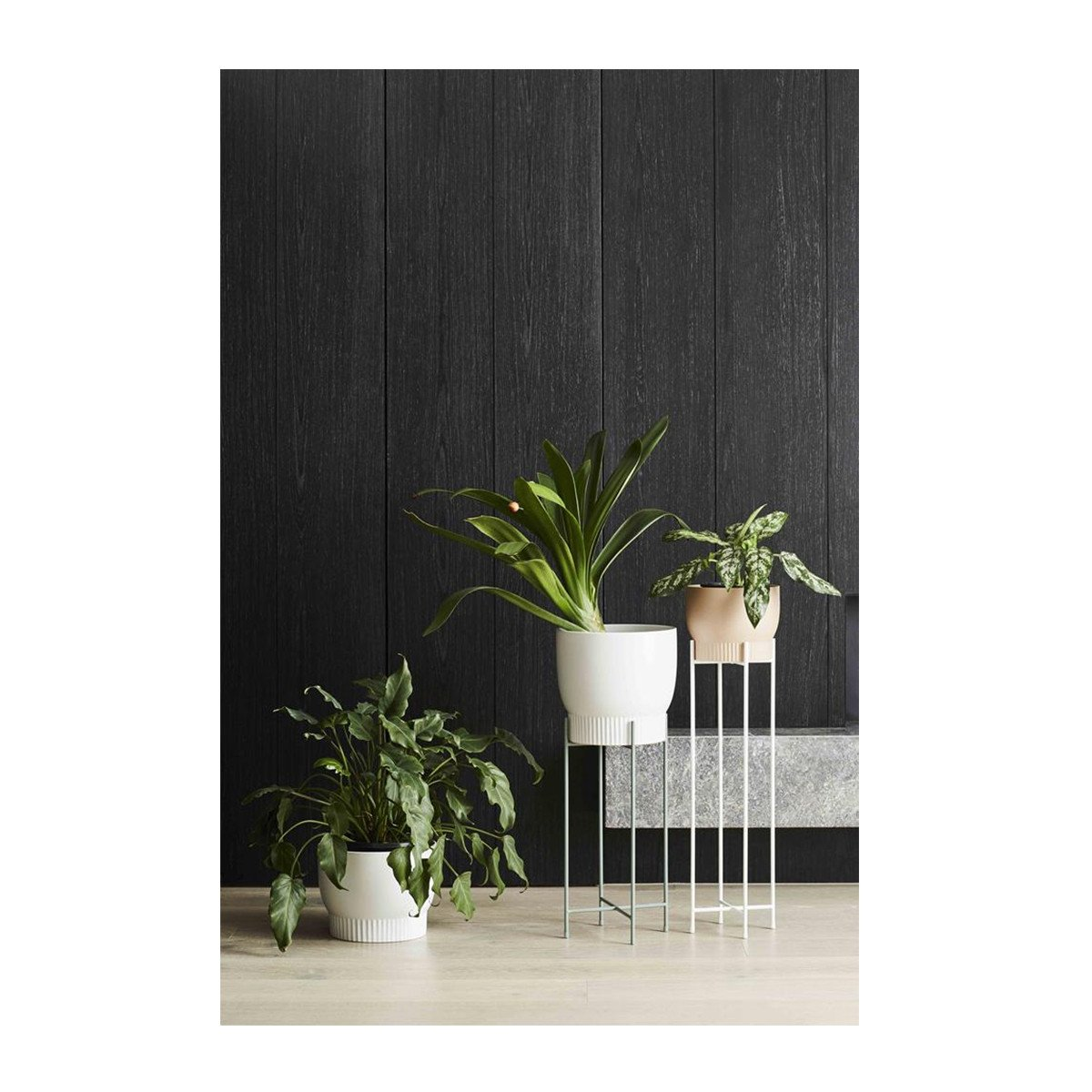 Iris Pot Stands | Indoor Pots | Interior Jungle